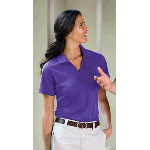 Ladies Dri-Mesh V-Neck Sport Shirt
