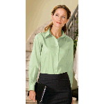 Ladies Long Sleeve Non-Iron Twill Shirt