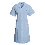 Womens Poplin Dress, Button Front